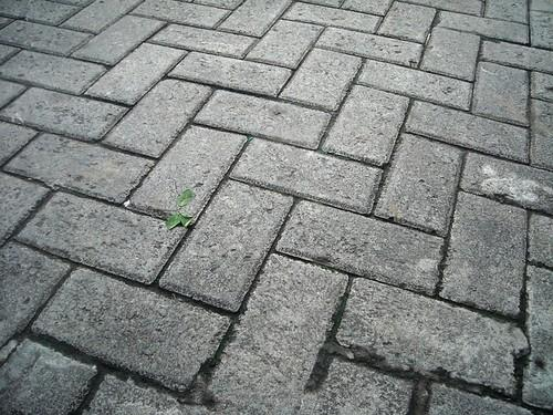 Herringbone block paving pattern