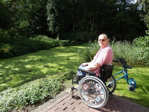 disabled-friendly garden